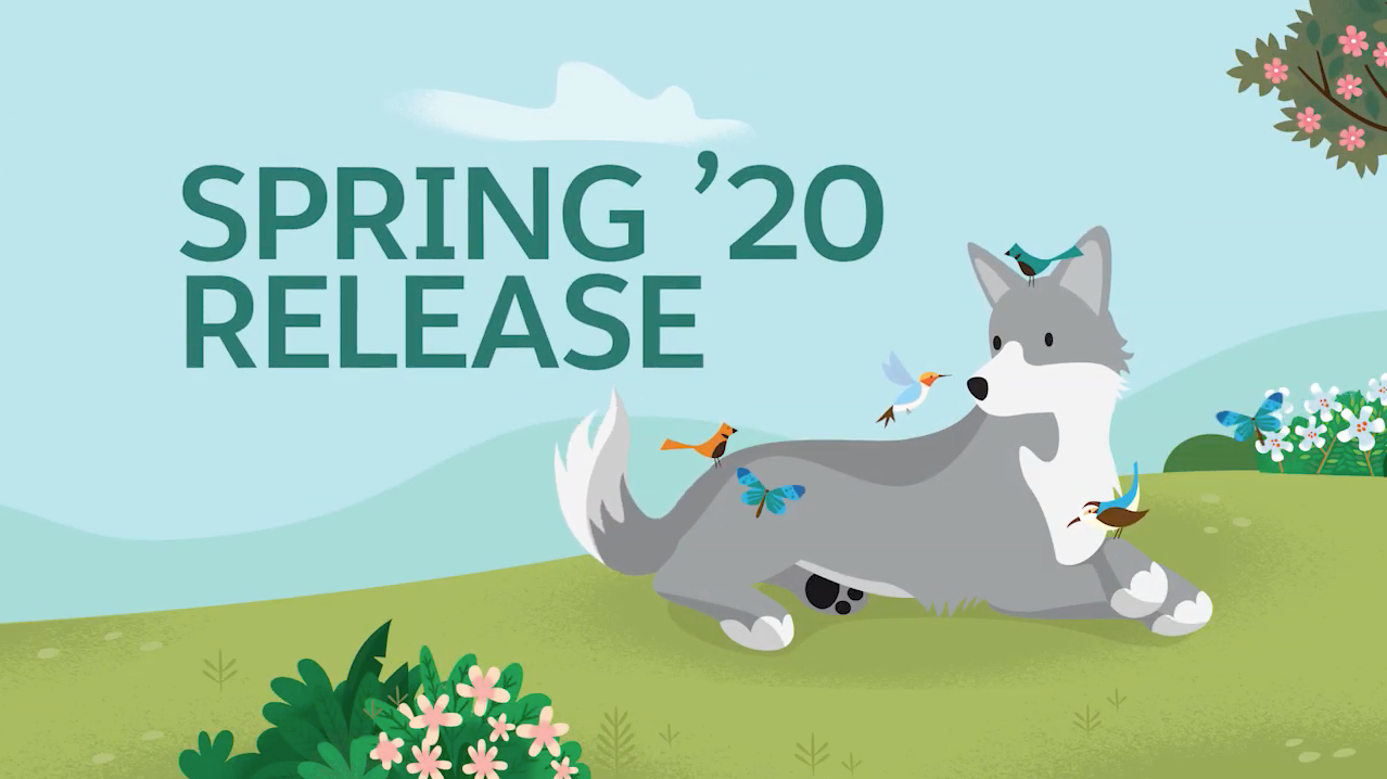 Salesforce Spring 20