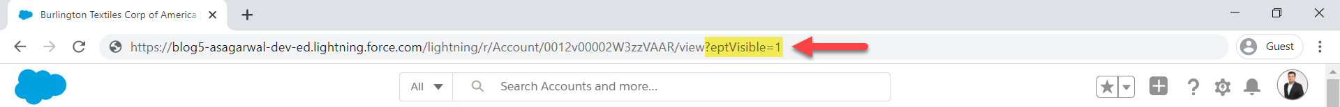 add string ?eptVisible=1 to url