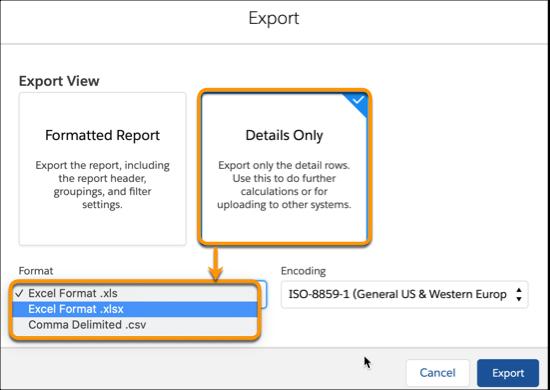 Export Report in XLSX Format