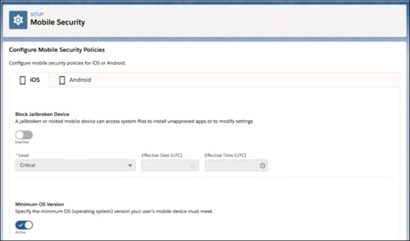 Enhanced Security for Salesforce Mobile App