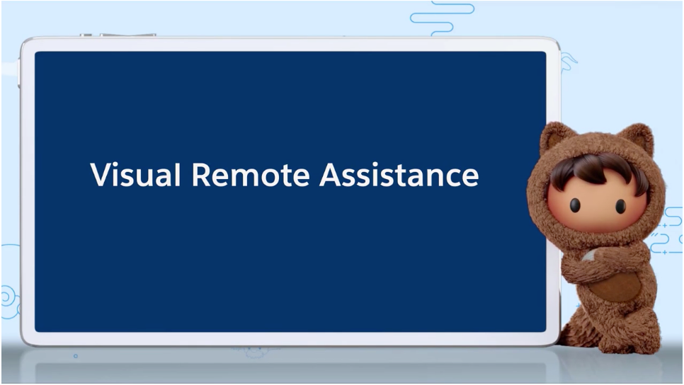 Visual Remote Assistant